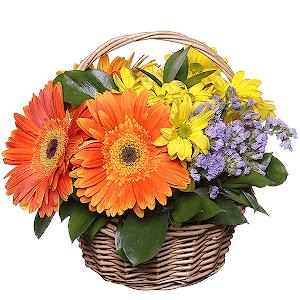 Купить беларуси купить цветы елабуга букеты руку невесты